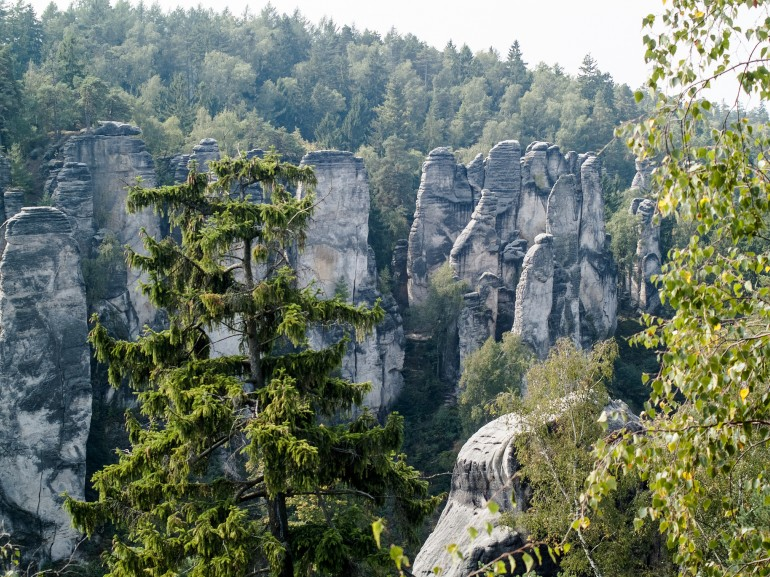 The Prachov Rocks with children, Photo of Prachov Rocks in Bohemian paradise, Czech Republic and trees
