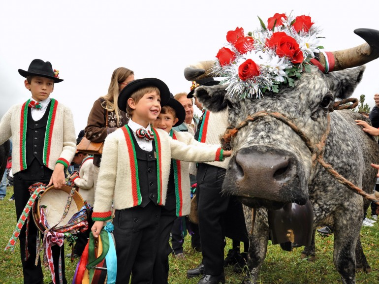 Traditional festival of Cogne