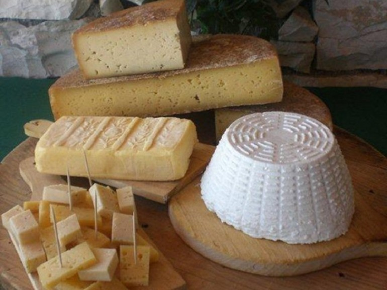 The gastronomic tradition of Belluno is linked breeding cattle ( but also of sheep and goats ) , the main economic activity until the second post-war period . Cheeses , meats and salamis include the