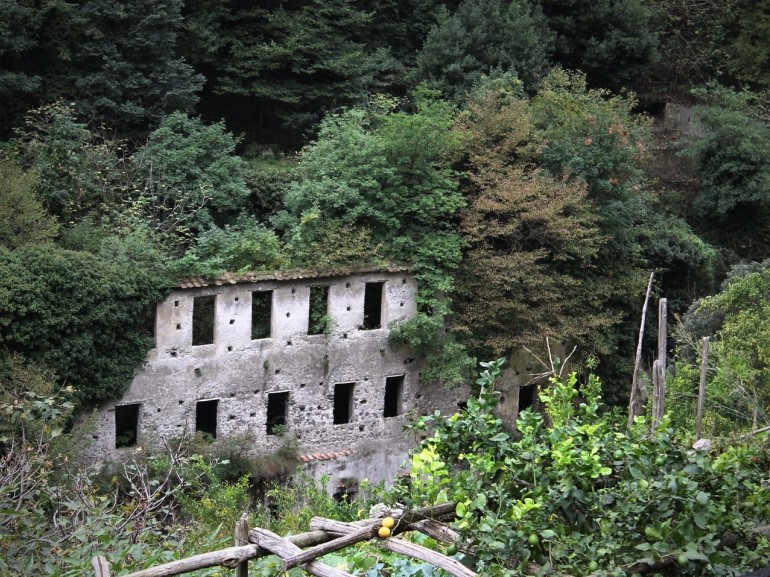 The ruins of an old paper mill, reconquered from the trees and nature, Valle delle Ferriere Itinerary, Amalfi Coast.
