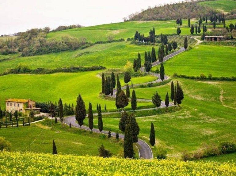 Gentle, carefully cultivated hills in Val d'Orcia, occasionally broken by farm houses and by picturesque villages.