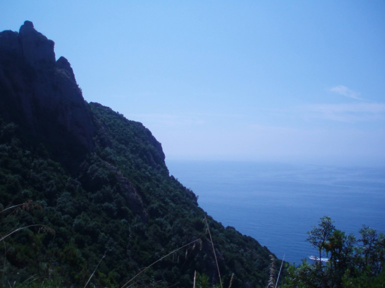 View of a hill coverd by trees in front of the sea, from the path to San Fruttuoso