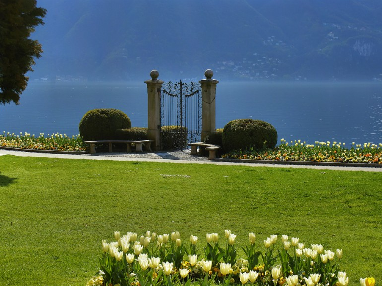 a green field reaches the see of the lake. It is dotted by yellow flowers and there is a gate opening on the water