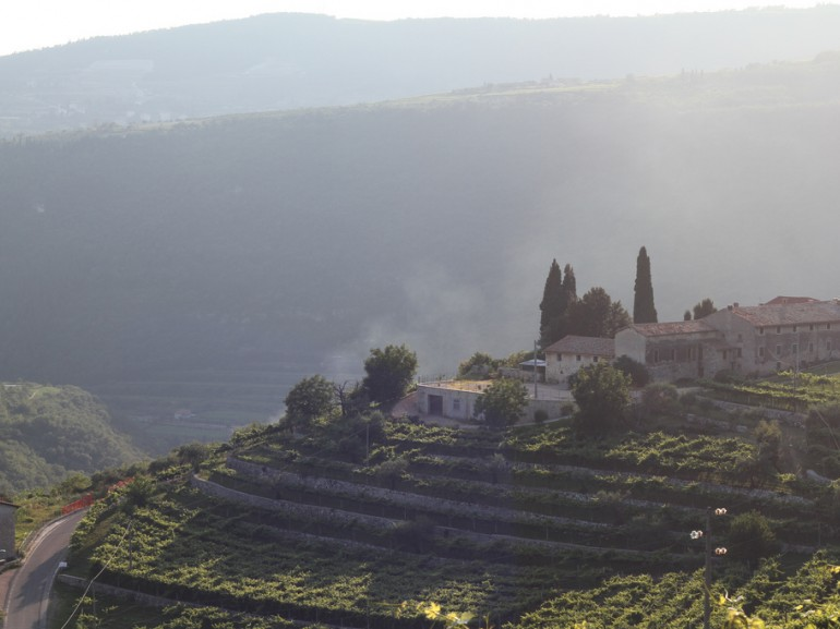 View on Valpolicella in the evening
