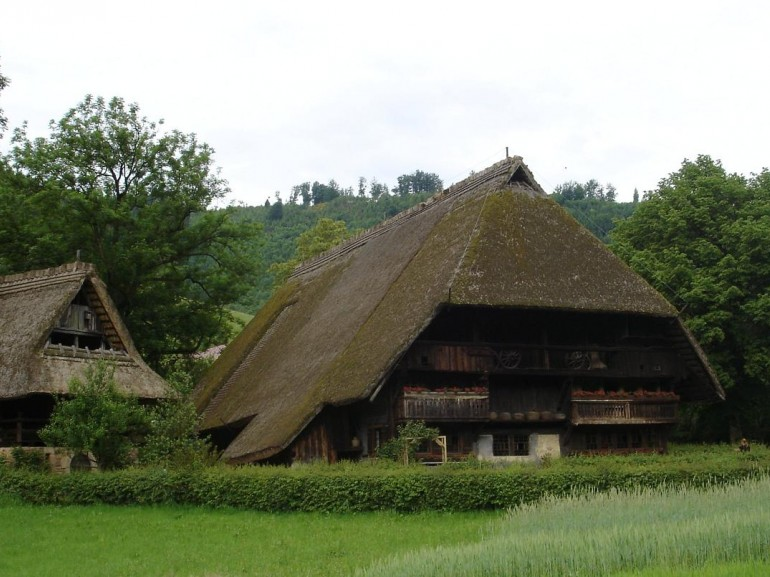 Typical houses of Black Forest