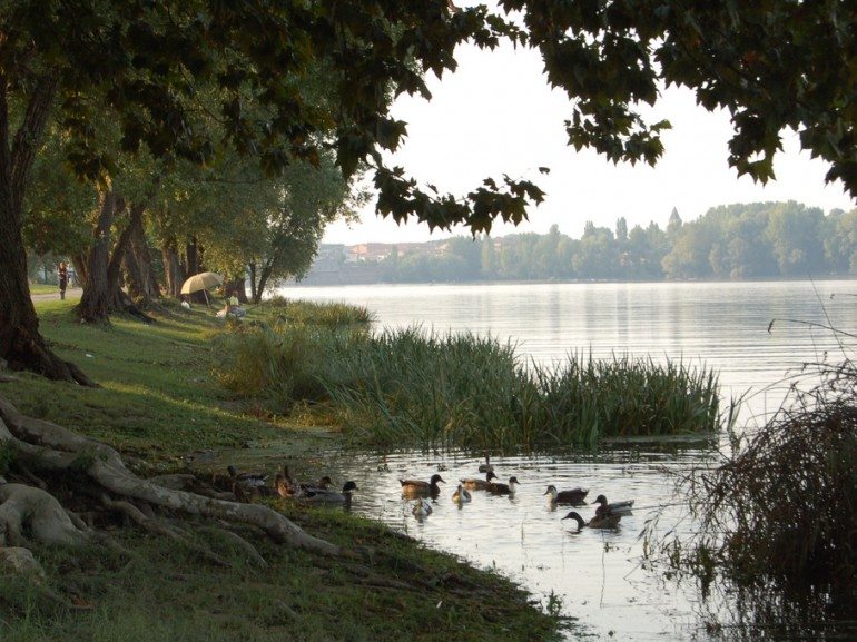 Lake Superiore of Mantua