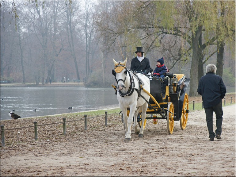 horse-riding in tha park around a small lake