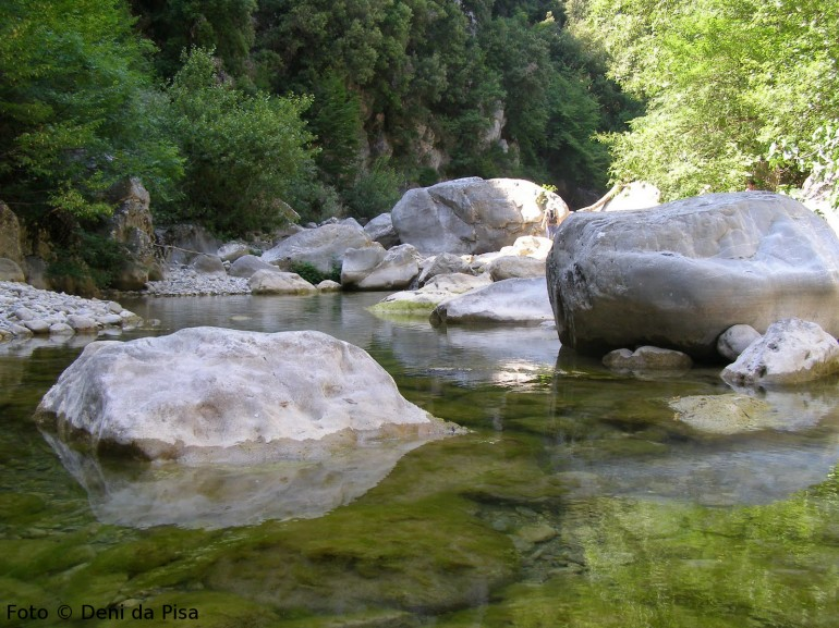 Swim in the clear waters of the river, Bosco dei Rocconi natural reserve, Tuscany, Italy