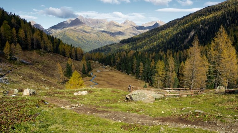 A landscape is shown: it's autumn and trees, grass and mountains have beautiful colours: orange, yellow and brown