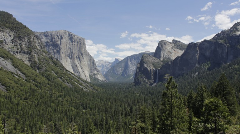the national park: pine trees forest and rocky walls