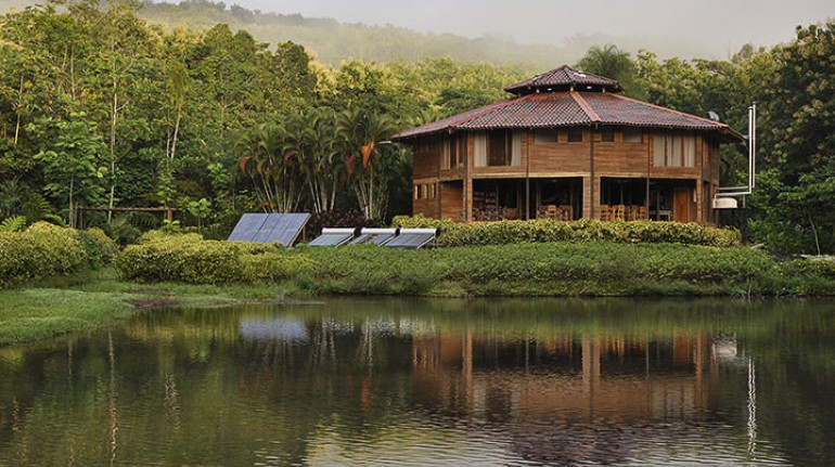 MACAW LODGE An Authentic Eco Lodge